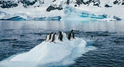 Polar Promise: Infographic 2019