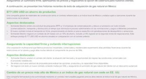 Mexico Estudios de Caso de Adquisición de Gas Natural