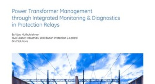 White Paper: Transformer Management through Integrated Monitoring & Diagnostics