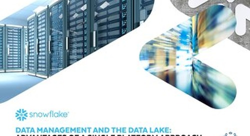 Data Management and the Data Lake: Advantages of a Single Platform Approach