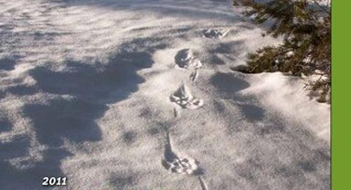 CNW-winter-2012
