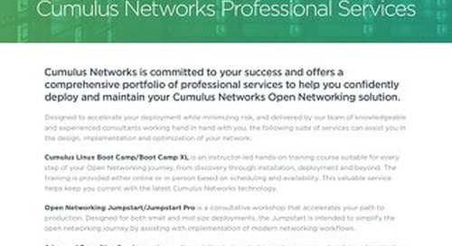 Professional services overview datasheet -updated