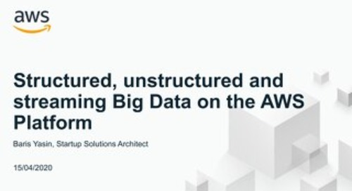 Startup Accelerate Series  - Big Data (April 15th)
