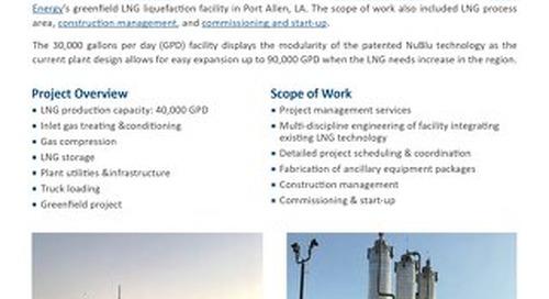 Port Allen LNG Liquefaction Facility
