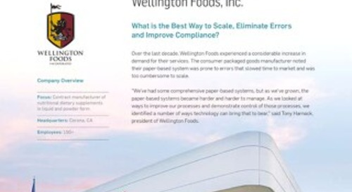 Wellington Foods Case Study