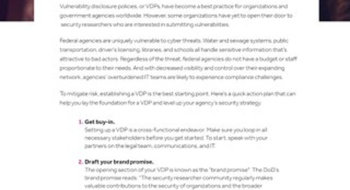 VDP Action Plan For Government Agencies
