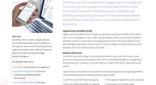Legal Invoice Analytics