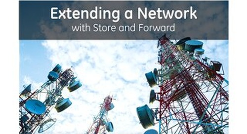 White Paper: Extending a Network with Store and Forward