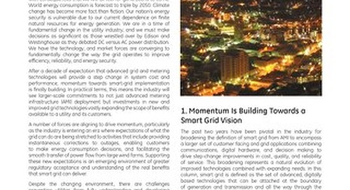 White Paper: Leader or Follower, Developing the Smart Grid Business Case