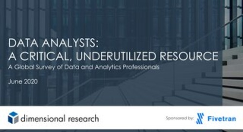2020 State of Data Analysts Global Survey