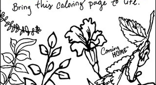 Coming Home Magazine Coloring Book