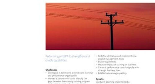 Case Study: Enterprise Learning Performance Assessment for Energy Company