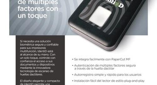 IdentiD Overview en Español