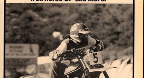 Cycle News 1981 11 17