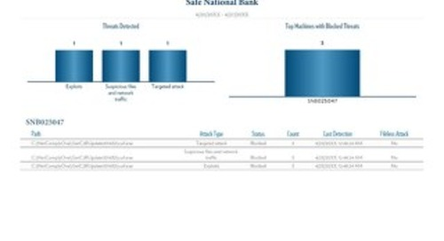 Advanced Endpoint Protection Activity-Sample Report