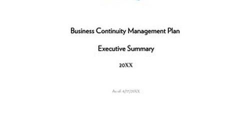 Executive Summary - Bank and CU