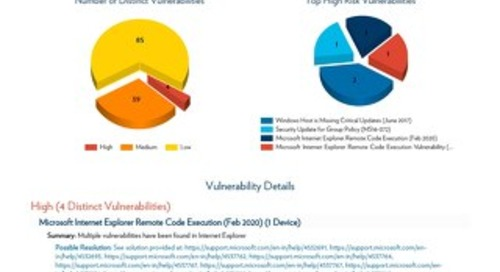 V-Scan Results by Vulnerability