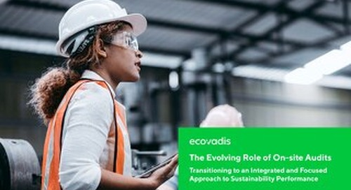 The Evolving Role of On-site Audits: An Integrated Approach to Supplier Sustainability Performance