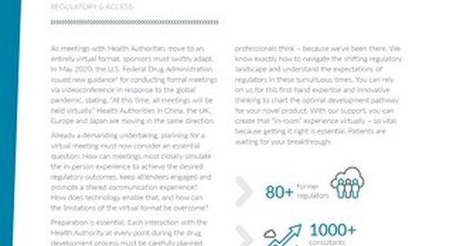 Virtual Health Authority Meetings Factsheet