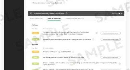 Ficha de resultados RSE de EcoVadis (muestra)