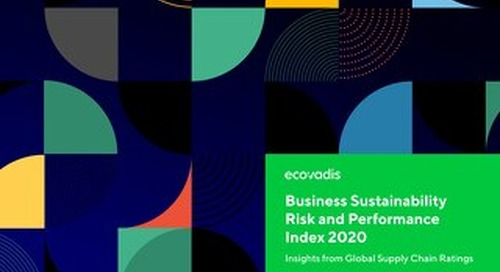 Indice Performance/Risque EcoVadis 2020