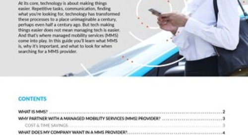 Managed Mobility Services 101: What You Need To Know About MMS