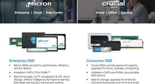 Micron Two Brands One Channel