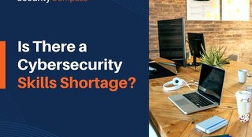 Is There a Cybersecurity Skills Shortage?