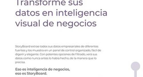 StoryBoard Overview en Español