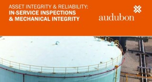 In Services Inspection & Mechanical Integrity