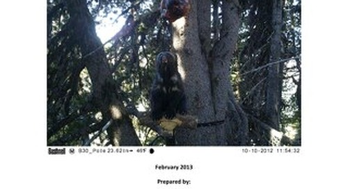 2012-2013-fall-spring-citizen-wildlife-monitoring-report