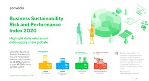 Infografica: Business Sustainability Risk and Performance Index 2020