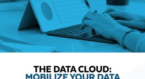 The Data Cloud - Mobilize Your Data in the Service of Your Business
