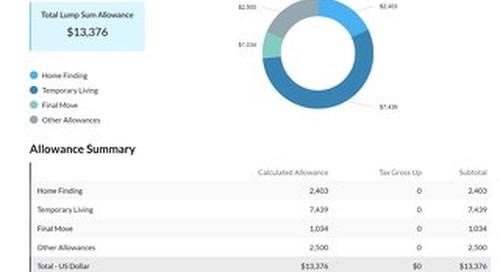 Lump Sum Allowance Sample Report