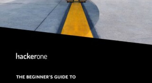 The Beginner's Guide To Hacker-Powered Security For Aviation