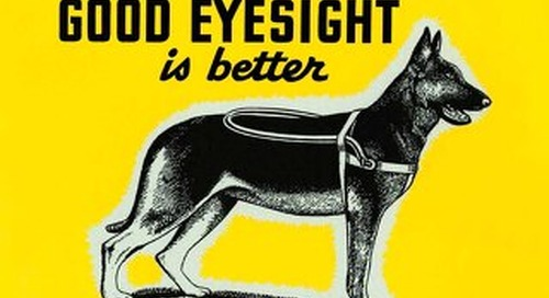 """""""Seeing-Eye"""" Dogs are Wonderful, but Good Eyesight is Better! Guard your Eyes. Wear Safety Googles - poster"""
