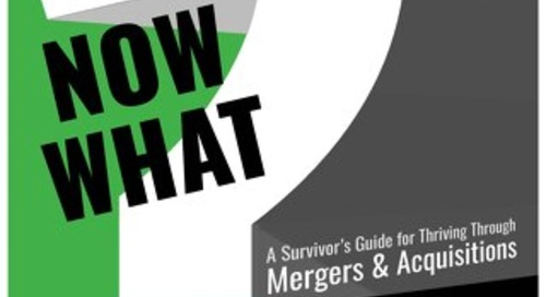 Sample Chapter: A Survivor's Guide Through Mergers & Acquisitions