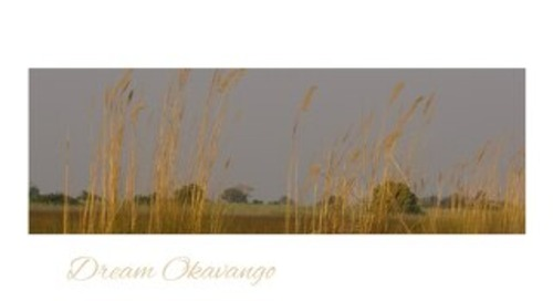 Dream Okavango