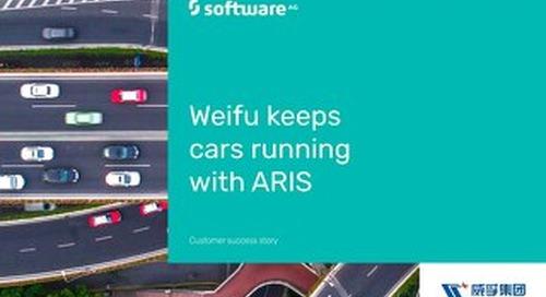 Weifu keeps cars running with ARIS