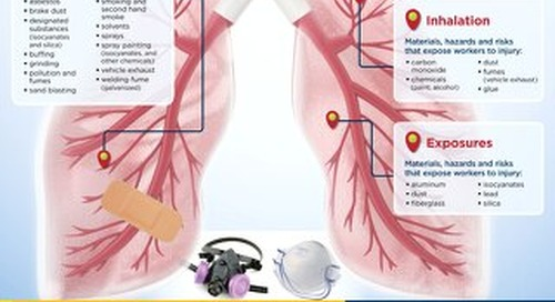 What Can Happen to Your Lungs and How to Protect Them