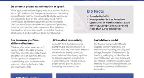 EIS Technology: A Business Overview