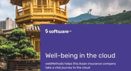 Making a journey to the cloud with webMethods & ARIS
