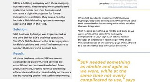 SEF | Partnering With VistaVu for Continuous Innovation