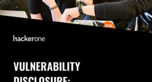 Vulnerability Disclosure: Considerations, Risks, And Costs