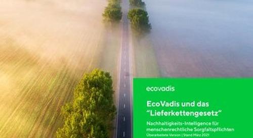 EcoVadis und das Lieferkettengesetz | Neuerungen 2021