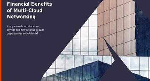 The Business-Wide Financial Benefits of Multi-Cloud Networking