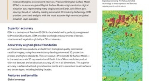 Digital Surface Model (DSM)