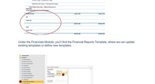 Financial Report Customization | SAP Business One