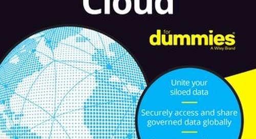 The Data Cloud for Dummies