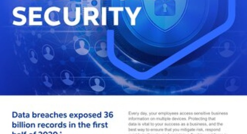 GO Teamwork Security 2021 - Flyer - Cognizant MBG